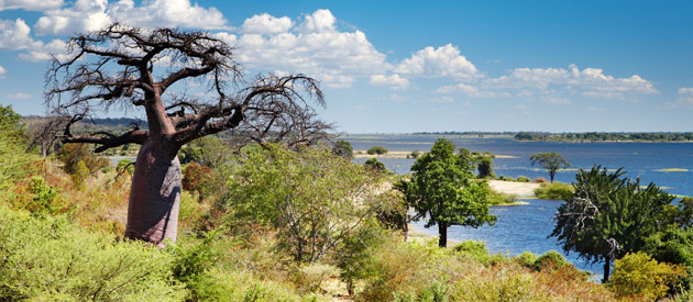 Fun Facts About Botswana - A Democratic Paradise in the World!